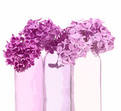 Lilas rose dans des vases roses Photo stock