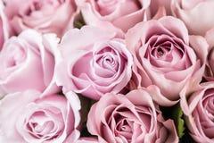 Lilaträdgården steg Bukettblommor av rosor i den glass vasen Sjaskig stilhemdekor Morgondagg - variation wallpaper Royaltyfria Foton