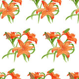Lili watercolor  flower seamless pattern Royalty Free Stock Image