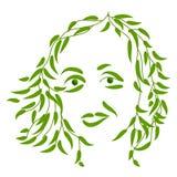 Lilia Royalty-vrije Stock Afbeeldingen