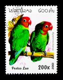 Lilian's Lovebird (Agapornis lilianae), Parrots serie, circa 199. MOSCOW, RUSSIA - NOVEMBER 25, 2017: A stamp printed in Lao People's Royalty Free Stock Images