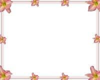 Lilie vektor abbildung