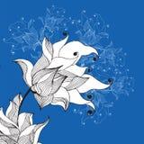Lilie blomma Arkivfoto