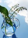 Lilie des Tales im Krug Stockfotografie