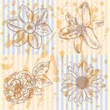 Lilie, Gänseblümchen und stieg, Narzissenskizze, nahtloses Muster Stockfotografie