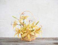 Lilie im Korb auf Hintergrundweißwand Stockfotografie