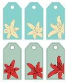 Lilien. Kennsätze Stock Abbildung