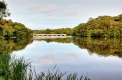 Lilien-Teiche mit der acht Bogen-Brücke, Bosherton. Lizenzfreies Stockfoto