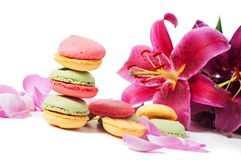 Lilien- und macaronplätzchen Stockfoto