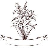 Lilien und Weinleseband, gravierend Lizenzfreie Stockfotografie