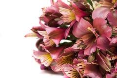 Lilienblumenstrauß stockfoto