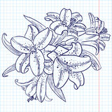 Lilies Royalty Free Stock Photo