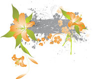 Lilies abstraction Royalty Free Stock Image