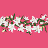 Lilies active pink horizontal seamless vector banner Royalty Free Stock Photo