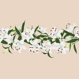 Lilies almond horizontal seamless vector banner Stock Photography