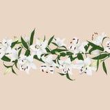 Lilies almond horizontal seamless vector banner Stock Photography