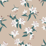 Lilies almond seamless vector background Stock Images