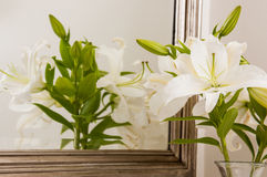 Lilies in a bathroom mirror Royalty Free Stock Photography
