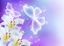 Lilies blossom and butterflies Stock Images