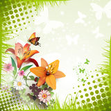 Lilies and butterflies Royalty Free Stock Photos