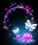 Lilies and butterfly Stock Image