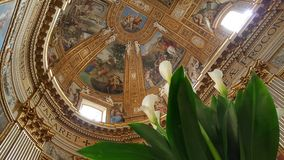 Lilies in Church of Sant'Andrea della Valle, Rome, Italy. Lilies inside ornate baroque Church of Sant'Andrea della Valle in Rome, Italy Stock Images
