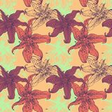 Lilies floral seamless pattern. Colorful icons on white background Stock Image