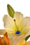 Lilies and earring with blue gem Stock Photography