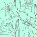 Lilies floral seamless pattern Royalty Free Stock Image