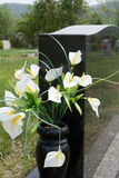 Lilies in Gravestone Vase Stock Photography