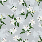 Lilies grey seamless vector background Royalty Free Stock Image