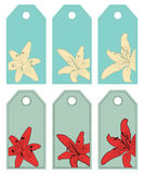 Lilies. Labels Royalty Free Stock Photo