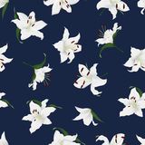 Lilies navy seamless vector print Royalty Free Stock Photos