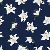 Lilies navy seamless vector print stock illustration