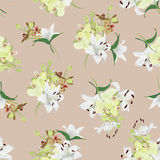 Lilies and orchids almond seamless vector background Royalty Free Stock Image