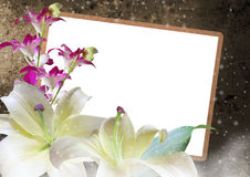 Lilies and Orchids floral frame. Beautiful lilies and orchids with photo frame on romantic background Royalty Free Stock Image