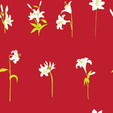 Lilies sparse pattern on red Royalty Free Stock Photography