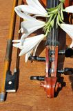 Lilies to rest upon violin Royalty Free Stock Photos