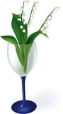 Lilies of the valley. In a glass Royalty Free Stock Photo