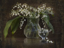 lilies of the valley and drops Royalty Free Stock Image