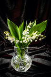 Lilies of the valley in flowerpot Royalty Free Stock Photos