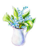 Lilies of the valley in jug. Watercolor painting. Lilies of the valley in jug isolated on white. Watercolor painting Stock Image