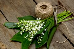 Lilies of the valley. In a bouquet lie on the table. scrap royalty free stock image