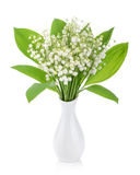 Lilies of the valley on white background Royalty Free Stock Photography