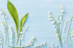 Lilies of the valley on wooden background stock image