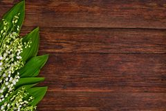 Lilies of the valley on wooden background, copy space Stock Photos