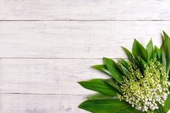 Lilies of the valley on wooden background, copy space Stock Images