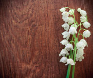 Lilies of the valley on wooden textured background Royalty Free Stock Photo