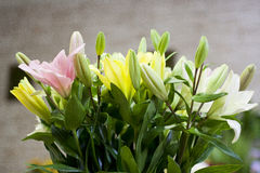 Lilies in vase. In flower schop Royalty Free Stock Photo