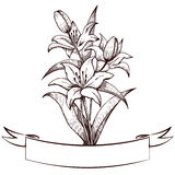 Lilies and vintage tape, engraving Royalty Free Stock Photography